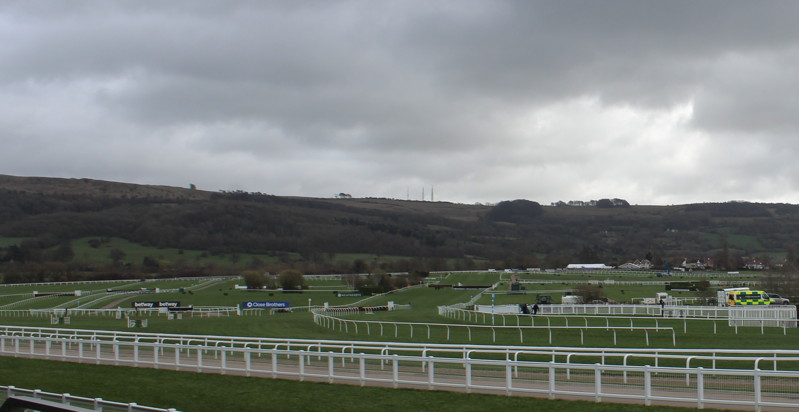cheltenham course before racing starts