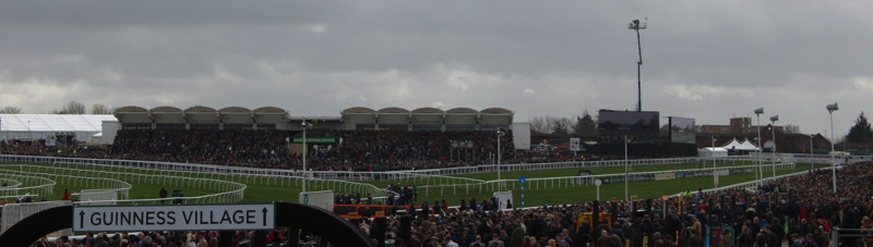 crowds watch the festival racing
