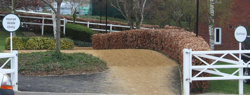 horse walk sign at cheltenham racecourse