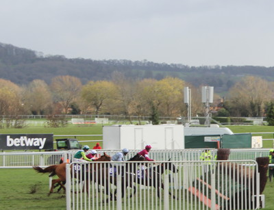 horses approach final fence at cheltenham