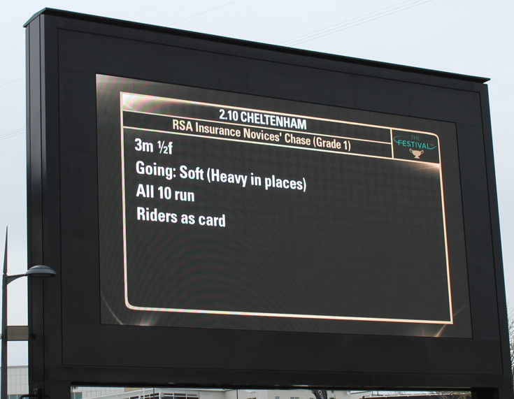rsa novices chase ladies day race information board