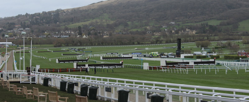 view of cheltenham fences