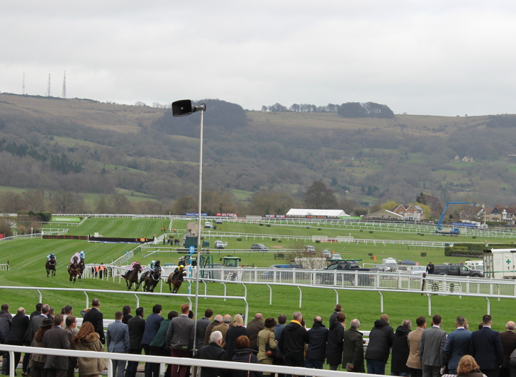 horse race at Cheltenham