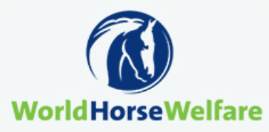 world horse welfare organisation
