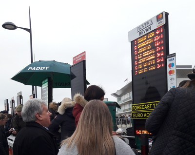 bookies at cheltenham
