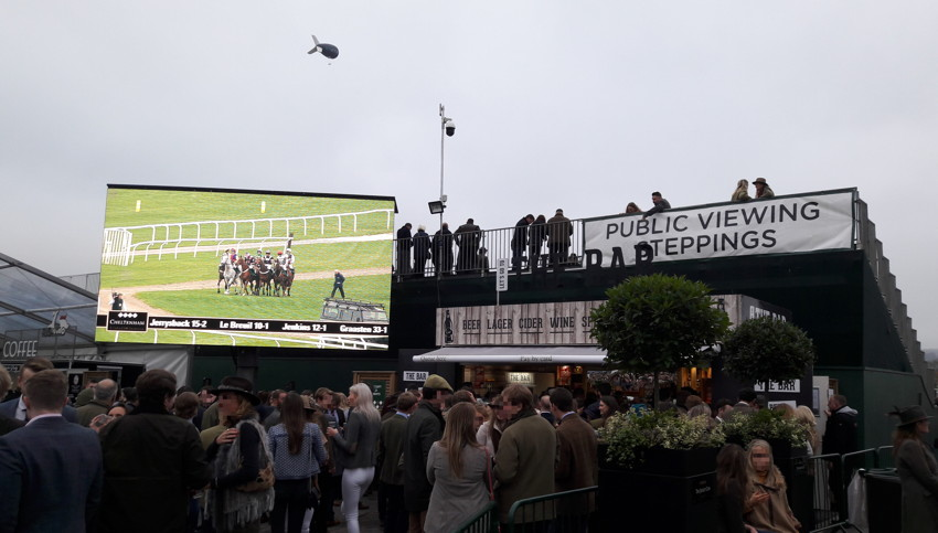 public viewing areas at cheltenham